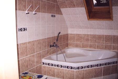 Jižní Čechy - penziony - Penzion u řeky v jižních Čechách - koupelna